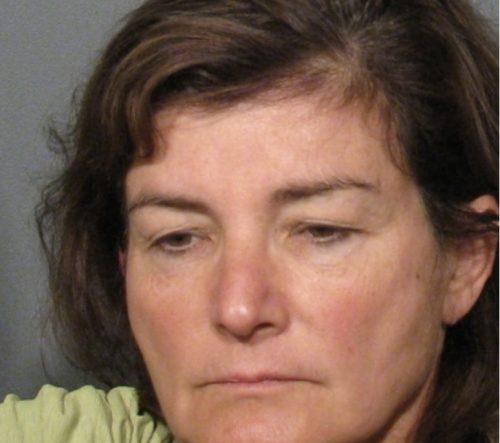 MN Supreme Court referee recommends suspension of Michelle MacDonald's law license