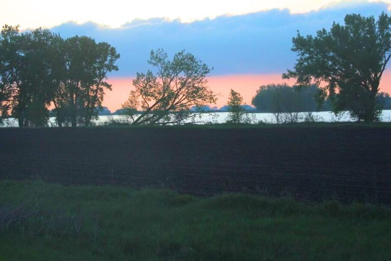 Jasmine Block: Missing in Minnesota for 29 days